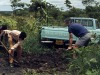 Collecting-soil-with-Bob-Sterling